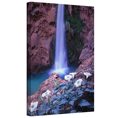 ArtWall Havasu Spring Gallery-Wrapped Canvas 24 x 32 (0uhl026a2432w)