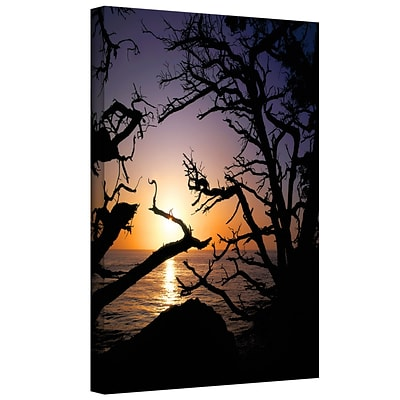 ArtWall Pacific Light Gallery-Wrapped Canvas 14 x 18 (0uhl031a1418w)