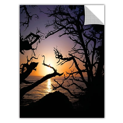 ArtWall Pacific Light Art Appeelz Removable Wall Art Graphic 36 x 48 (0uhl031a3648p)