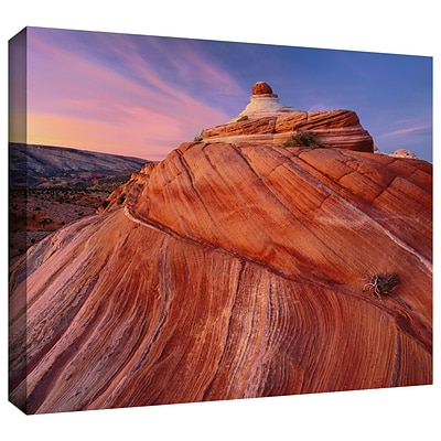 ArtWall Paria Wilderness Gallery-Wrapped Canvas 18 x 24 (0uhl032a1824w)