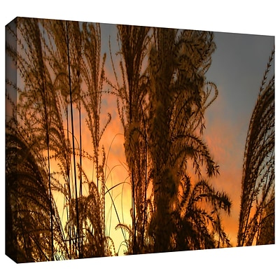 ArtWall Summer Grass Gallery-Wrapped Canvas 18 x 36 (0uhl037a1836w)