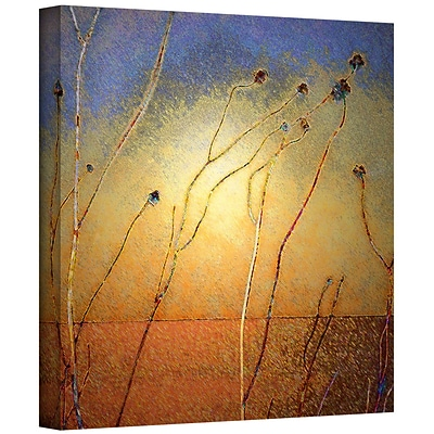 ArtWall Texas Sand Storm Gallery-Wrapped Canvas 14 x 14 (0uhl039a1414w)