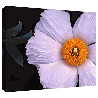 ArtWall Wild Hibiscus Gallery-Wrapped Canvas 36 x 48 (0uhl044a3648w)
