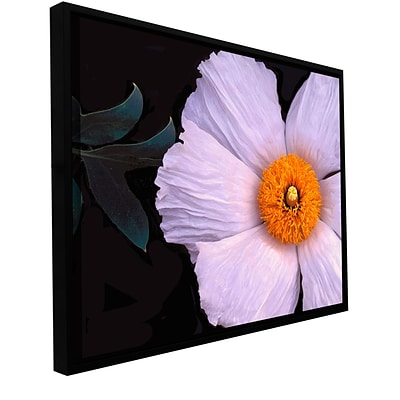 ArtWall Wild Hibiscus Gallery-Wrapped Canvas 36 x 48 Floater-Framed (0uhl044a3648f)