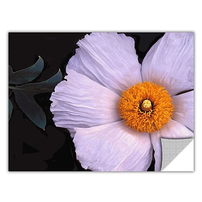 ArtWall Wild Hibiscus Art Appeelz Removable Wall Art Graphic 36 x 48 (0uhl044a3648p)