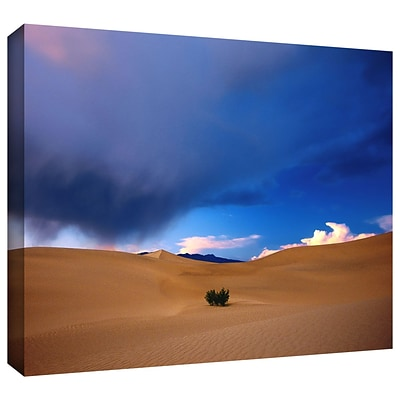 ArtWall Death Valley Winter Gallery-Wrapped Canvas 14 x 18 (0uhl050a1418w)