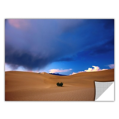 ArtWall Death Valley Winter Art Appeelz Removable Wall Art Graphic 36 x 48 (0uhl050a3648p)