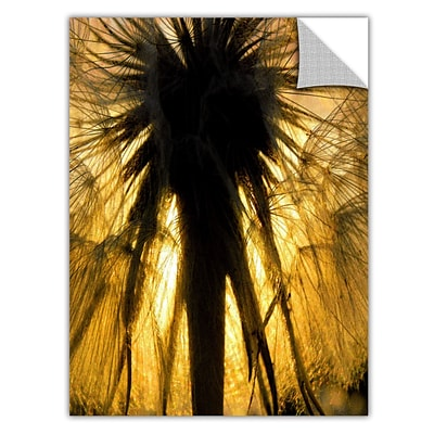ArtWall Heart of a Lion-Dandelion Art Appeelz Removable Wall Art Graphic 18 x 24 (0uhl053a1824p)