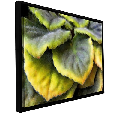 ArtWall Layers Gallery-Wrapped Canvas 14 x 18 Floater-Framed (0uhl056a1418f)