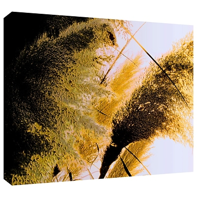 ArtWall Pampas In Relief Gallery-Wrapped Canvas 36 x 48 (0uhl061a3648w)