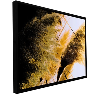 ArtWall Pampas In Relief Gallery-Wrapped Canvas 18 x 24 Floater-Framed (0uhl061a1824f)