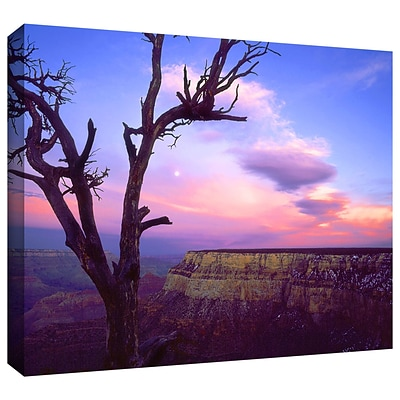 ArtWall South Rim Moon Gallery-Wrapped Canvas 24 x 32 (0uhl065a2432w)