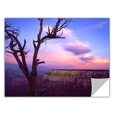 ArtWall South Rim Moon Art Appeelz Removable Wall Art Graphic 14 x 18 (0uhl065a1418p)