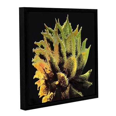 ArtWall Desert Vision Gallery-Wrapped Canvas 18 x 18 Floater-Framed (0uhl074a1818f)