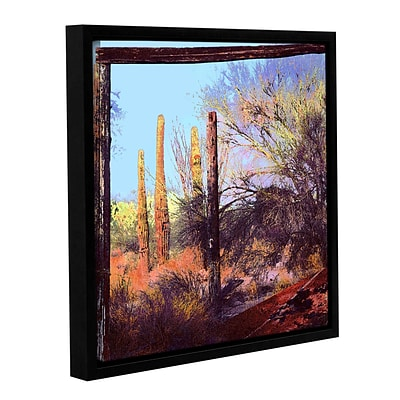 ArtWall Ghost Ranch 2 Gallery-Wrapped Canvas 18 x 18 Floater-Framed (0uhl076a1818f)