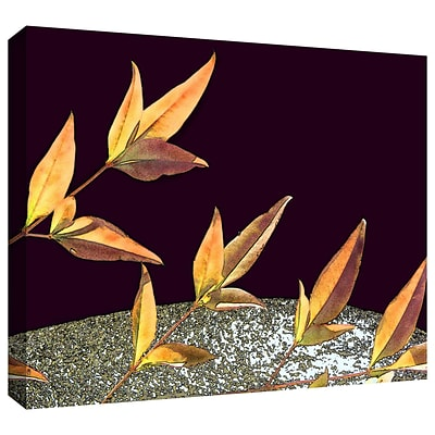 ArtWall Natural World Gallery-Wrapped Canvas 36 x 48 (0uhl086a3648w)