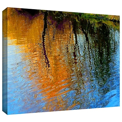 ArtWall Rogue Reflections Gallery-Wrapped Canvas 18 x 24 (0uhl095a1824w)