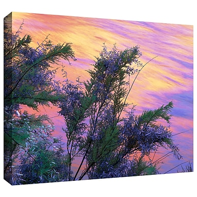 ArtWall sandstone Reflections Gallery-Wrapped Canvas 14 x 18 (0uhl096a1418w)