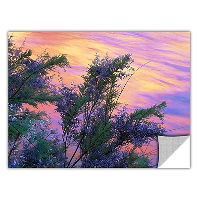 ArtWall sandstone Reflections Art Appeelz Removable Wall Art Graphic 14 x 18 (0uhl096a1418p)