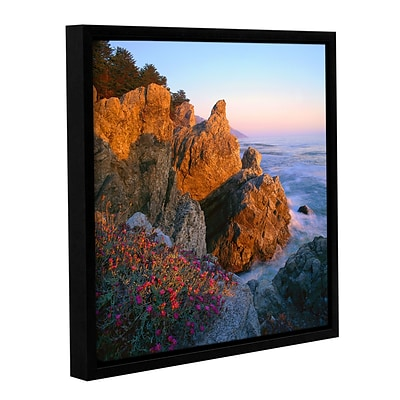 ArtWall Big Sur Sunset Gallery-Wrapped Canvas 14 x 14 Floater-Framed (0uhl104a1414f)