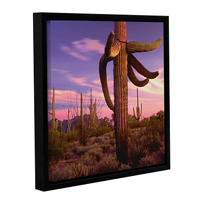 ArtWall Border Twilight Gallery-Wrapped Canvas 24 x 24 Floater-Framed (0uhl106a2424f)