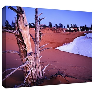ArtWall Coal Dunes Dusk Gallery-Wrapped Canvas 36 x 48 (0uhl107a3648w)