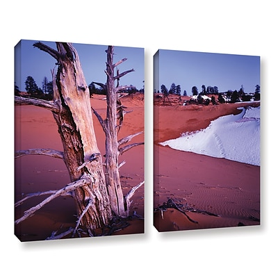ArtWall Coal Dunes Dusk 2-Piece Gallery-Wrapped Canvas Set 18 x 24 (0uhl107b1824w)