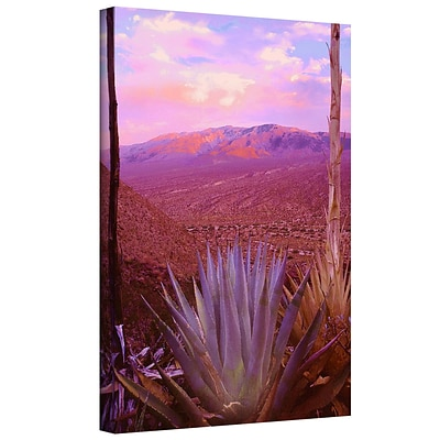ArtWall Desert Cycle Gallery-Wrapped Canvas 18 x 24 (0uhl109a1824w)