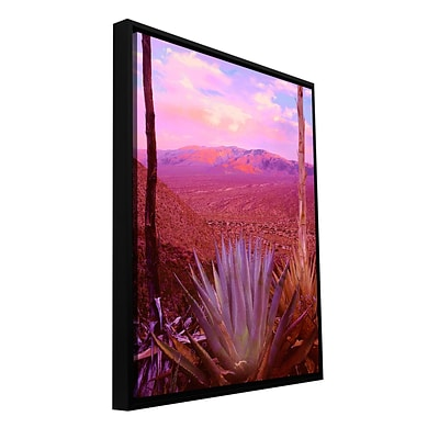 ArtWall Desert Cycle Gallery-Wrapped Canvas 14 x 18 Floater-Framed (0uhl109a1418f)