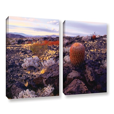 ArtWall In The Mojave 2-Piece Gallery-Wrapped Canvas Set 24 x 32 (0uhl110b2432w)