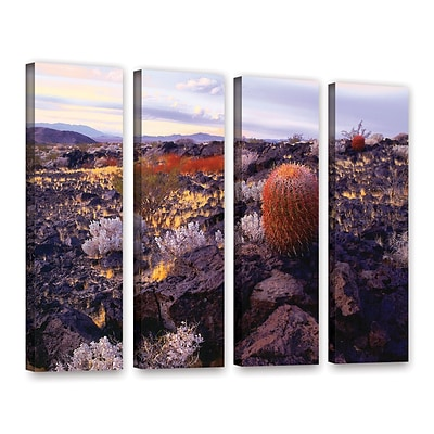 ArtWall In The Mojave 4-Piece Gallery-Wrapped Canvas Set 24 x 32 (0uhl110d2432w)