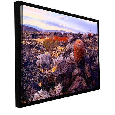 ArtWall In The Mojave Gallery-Wrapped Canvas 24 x 32 Floater-Framed (0uhl110a2432f)