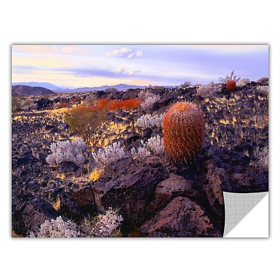 ArtWall In The Mojave Art Appeelz Removable Wall Art Graphic 24 x 32 (0uhl110a2432p)