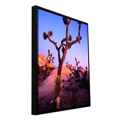 ArtWall Joshua Tree Twilight Gallery-Wrapped Canvas 18 x 24 Floater-Framed (0uhl112a1824f)