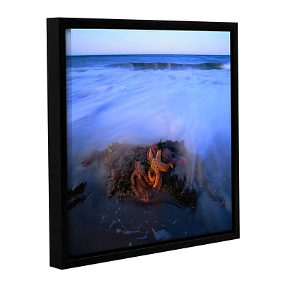 ArtWall Morning Sea Stars Gallery-Wrapped Canvas 36 x 36 Floater-Framed (0uhl114a3636f)