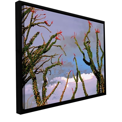 ArtWall Yuma Desert Spring Gallery-Wrapped Canvas 24 x 32 Floater-Framed (0uhl121a2432f)