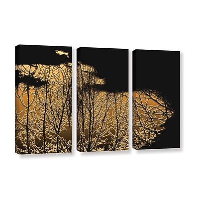 ArtWall Break In The Storm 3-Piece Gallery-Wrapped Canvas Set 36 x 54 (0uhl126c3654w)