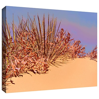ArtWall Coral Dunes Noon Gallery-Wrapped Canvas 18 x 24 (0uhl129a1824w)