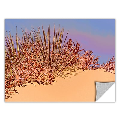 ArtWall Coral Dunes Noon Art Appeelz Removable Wall Art Graphic 24 x 32 (0uhl129a2432p)