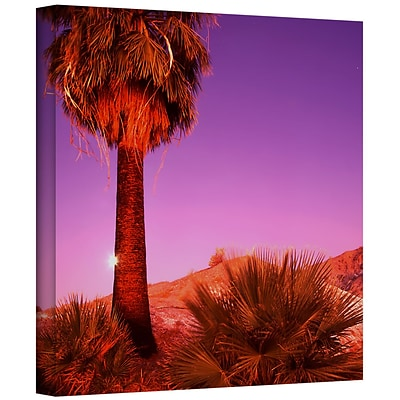 ArtWall Desert Moon Gallery-Wrapped Canvas 14 x 14 (0uhl131a1414w)