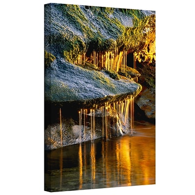 ArtWall Dripping Sunlight Gallery-Wrapped Canvas 24 x 32 (0uhl132a2432w)