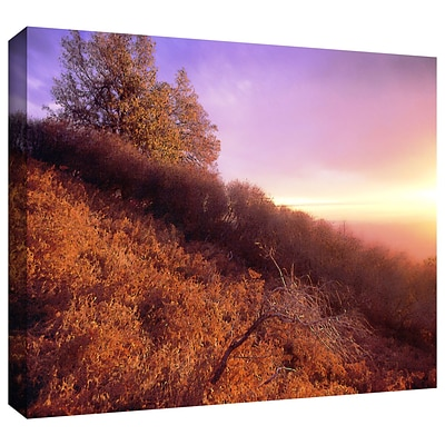 ArtWall Fire Light Gallery-Wrapped Canvas 36 x 48 (0uhl134a3648w)