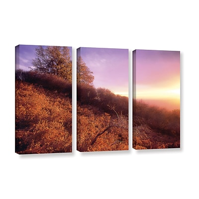 ArtWall Fire Light 3-Piece Gallery-Wrapped Canvas Set 36 x 54 (0uhl134c3654w)