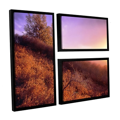 ArtWall Fire Light 3-Piece Canvas Flag Set 36 x 48 Floater-Framed (0uhl134g3648f)