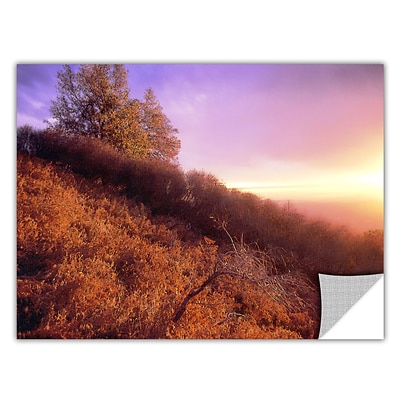 ArtWall Fire Light Art Appeelz Removable Wall Art Graphic 24 x 32 (0uhl134a2432p)