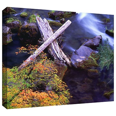 ArtWall Rogue River Falls Gallery-Wrapped Canvas 24 x 32 (0uhl137a2432w)