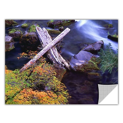 ArtWall Rogue River Falls Art Appeelz Removable Wall Art Graphic 24 x 32 (0uhl137a2432p)
