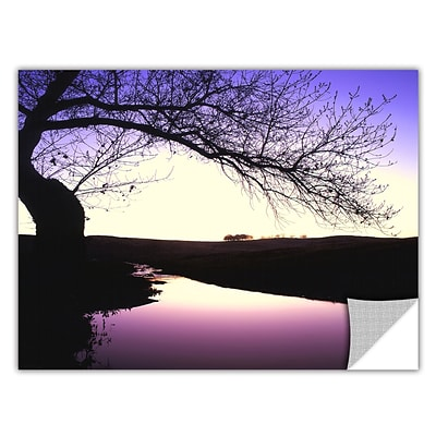 ArtWall squaw Valley Twilight Art Appeelz Removable Wall Art Graphic 14 x 18 (0uhl139a1418p)