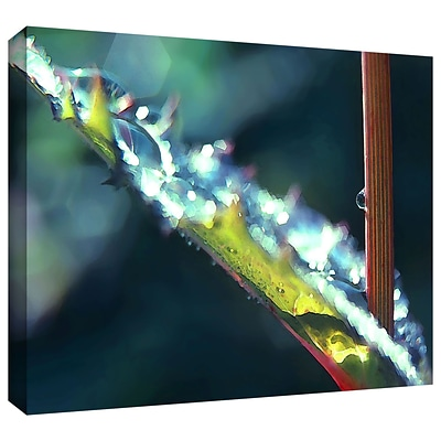 ArtWall After Garden Rain Gallery-Wrapped Canvas 18 x 24 (0uhl145a1824w)
