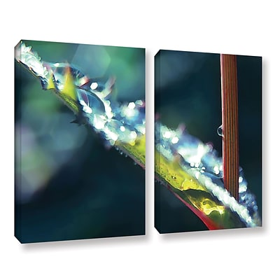 ArtWall After Garden Rain 2-Piece Gallery-Wrapped Canvas Set 36 x 48 (0uhl145b3648w)